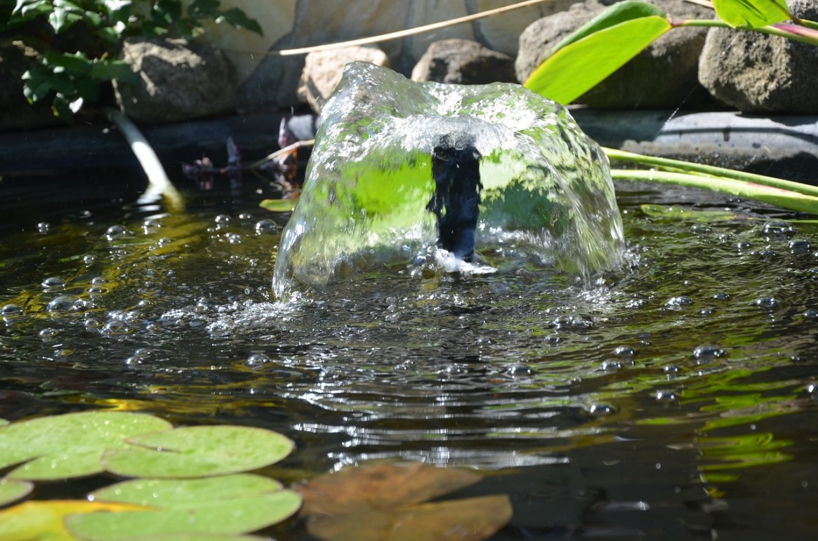 Oxygen, Aeration, and Oxygenation in Ponds and Aquaria