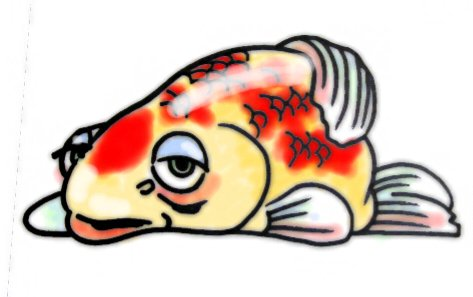 First Aid For Tropical Fish