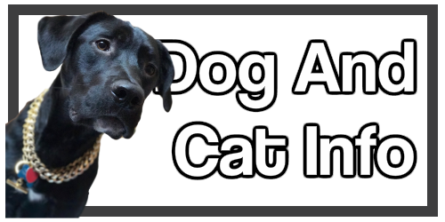 Dog and Cat Information of value to Dr Erik Johnson East Cobb Veterinarian Customers