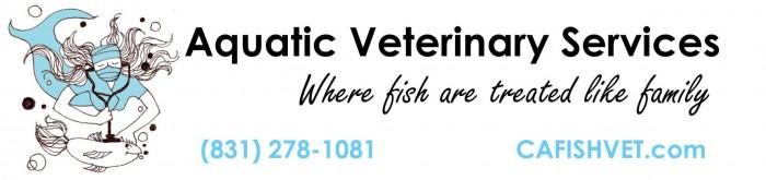 fish veterinarian dr sanders