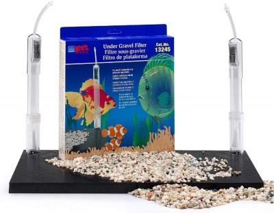 goldfish beginner