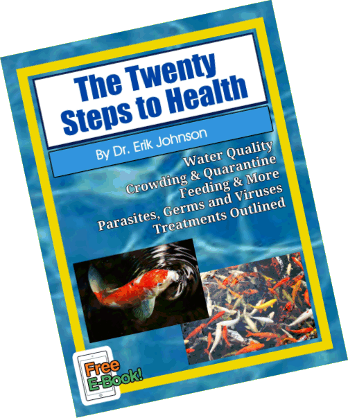 Twenty Steps E-Book –  Free – Read it Online