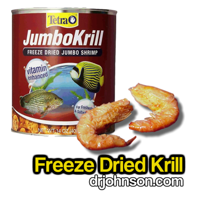 Freeze Dried Krill: Four Things To Know
