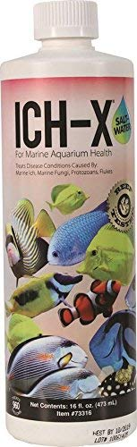 fish treatments for ich ich-x