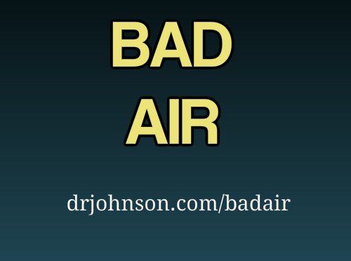 "Bad Air ""Air and Pets"" How Toxic Air is Causing Atopy"